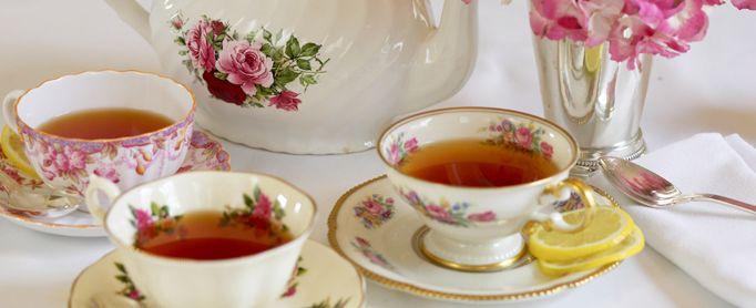 Benefícios do Chá de Tinguaba